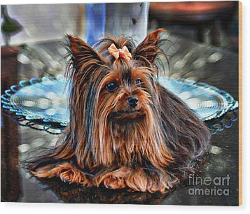 Yorkie Girl  Wood Print