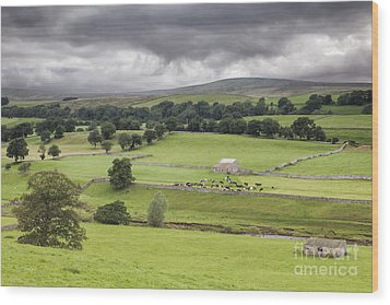 Yorkshire Dales Wood Print by Colin and Linda McKie