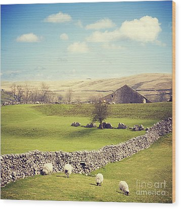 Yorkshire Dales With Dry Stone Wall Wood Print by Colin and Linda McKie
