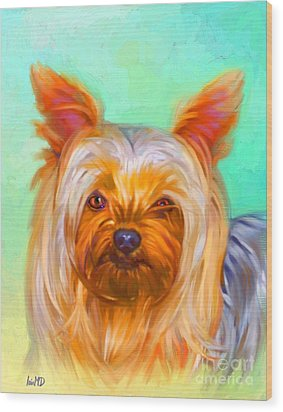 Yorkshire Terrier Painting Wood Print by Iain McDonald