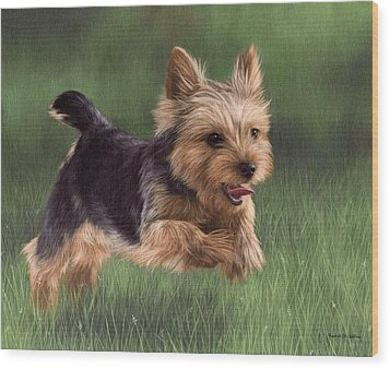 Yorkshire Terrier Painting Wood Print