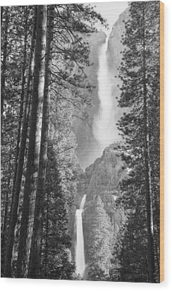 Yosemite Falls Black And White Wood Print by Bruce Gourley
