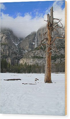 Yosemite In The Dead Of Winter Wood Print by Patricia Sanders