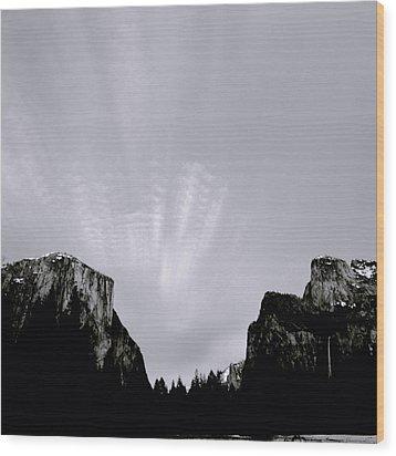 Yosemite National Park Wood Print by Shaun Higson