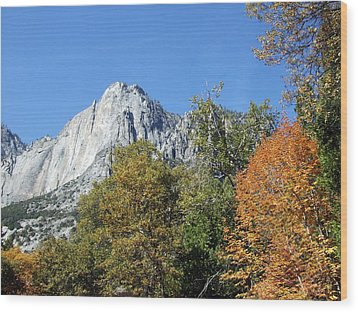 Wood Print featuring the photograph Yosemite Trees by Richard Reeve