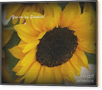 You Are My Sunshine - Greeting Card Wood Print by Dora Sofia Caputo Photographic Art and Design