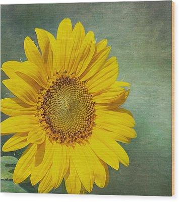 You Are My Sunshine Wood Print by Kim Hojnacki