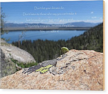 Wood Print featuring the photograph You Can Make It. Inspiration Point by Ausra Huntington nee Paulauskaite