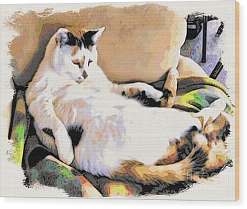 You Move The Stuff From The Corrner. I Need My Nap. Wood Print by Phyllis Kaltenbach