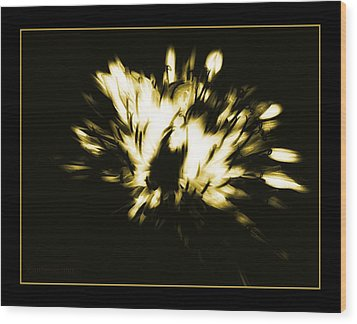 You Shine II Wood Print by Mimulux patricia no No