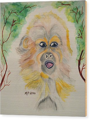 You Silly Monkey Wood Print by Maria Urso