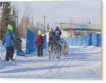 Young Fans Of Mushers Wood Print by Tim Grams