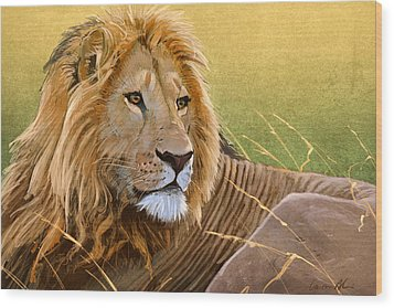 Young Lion Wood Print by Aaron Blaise