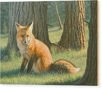 Young Red Wood Print by Paul Krapf