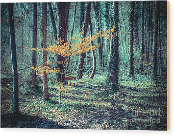 Youngster Wood Print by Hannes Cmarits