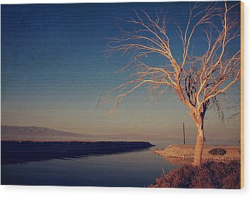 Your One And Only Wood Print by Laurie Search