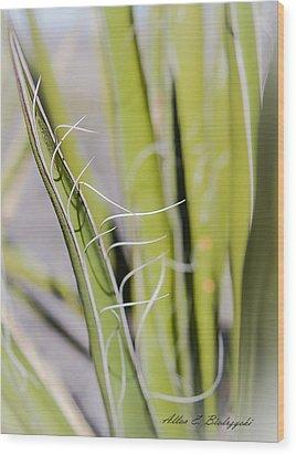 Wood Print featuring the photograph Yucca by Allen Biedrzycki