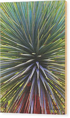 Wood Print featuring the photograph Yucca At The Arboretum by Tom Janca