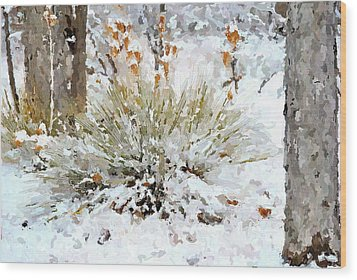 Yucca In The Snow Wood Print by John Cullum