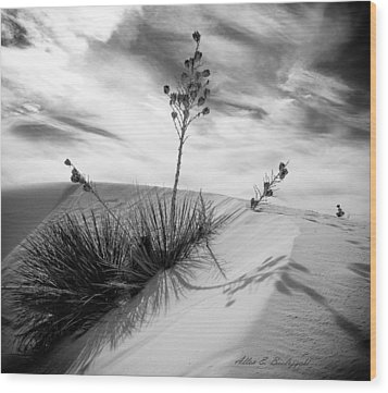 Yucca In White Sand Wood Print