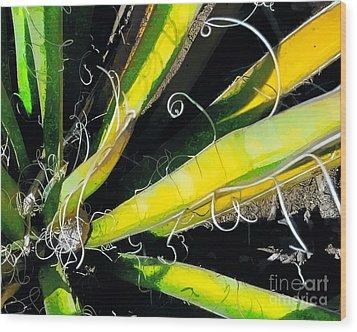 Yucca Spirals Wood Print