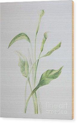 Zad A Bouquet Wood Print