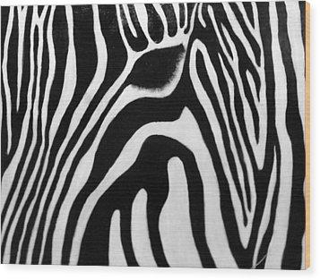 Zebra 13 Wood Print