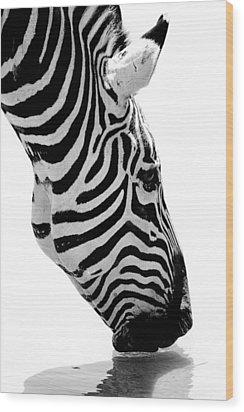 Wood Print featuring the photograph Zebra by Elizabeth Budd