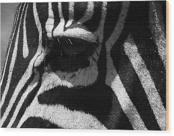 Zebra Eye Wood Print by Aidan Moran