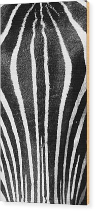 Wood Print featuring the photograph Zebra Face by Paul Miller