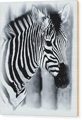 Zebra Wood Print by Kathleen Struckle