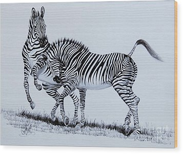 Zebra Play Wood Print