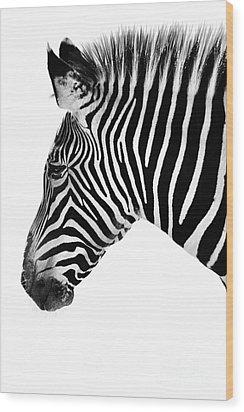 Zebra Profile Black And White Wood Print