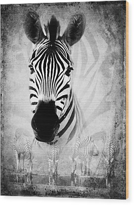 Zebra Profile In Bw Wood Print by Ronel Broderick
