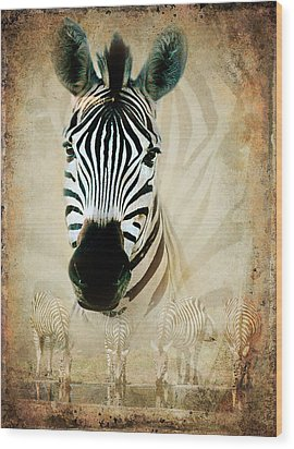 Zebra Profile Wood Print by Ronel Broderick