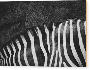 Zebra Stripes Wood Print by Joan Herwig