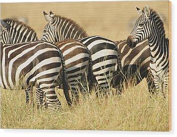 Zebra Stripes Wood Print by Phyllis Peterson