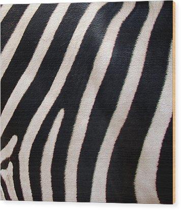 Zebra Stripes Wood Print by Ramona Johnston