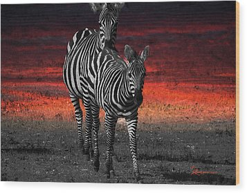 Zebra Train - Featured In Nature Photography - Wildlife And A Place For All Groups Wood Print by EricaMaxine  Price