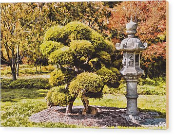 Wood Print featuring the photograph Zen Garden by Anthony Citro