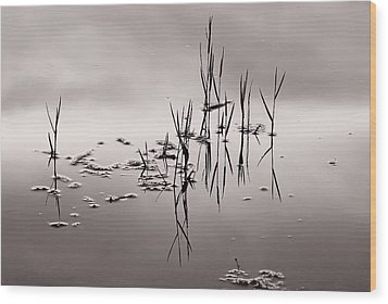 Wood Print featuring the photograph Zen Waters by Lorenzo Cassina