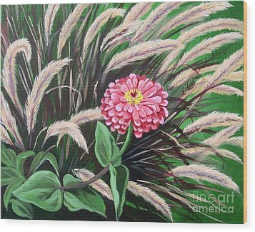 Zinnia Among The Grasses Wood Print