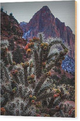 Zion Buckhorn Cholla Macro 001 Wood Print