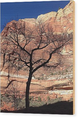 Zion Canyon Tree #2 Wood Print by Feva  Fotos