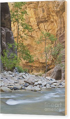 Wood Print featuring the photograph Zion Narrows by Bryan Keil