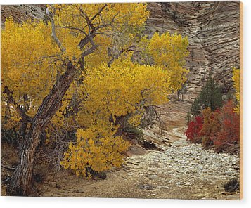 Zion National Park Autumn Wood Print by Leland D Howard