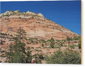Wood Print featuring the photograph Zion National Park by Robert  Moss