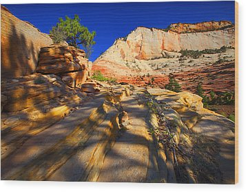 Wood Print featuring the photograph Zion National Park Usa by Richard Wiggins