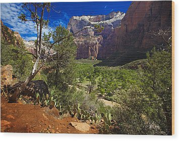 Wood Print featuring the photograph Zion National Park River Walk by Richard Wiggins