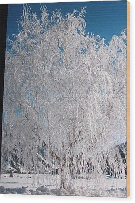 Wood Print featuring the photograph -32 Degrees by Shawn Hughes